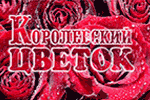 Королевский цветок <nobr>(салон цветов и подарков)</nobr> Королев